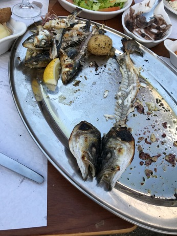 after fish @ Ericeira fish marekt